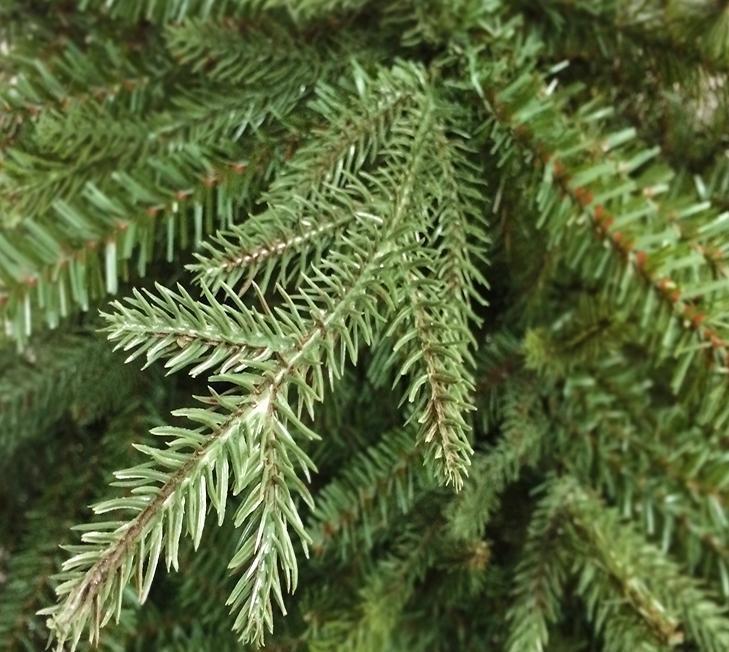 Pe Christmas Trees Uk: 6.5ft Hemlock Artificial Christmas Tree PE & PVC Mixed