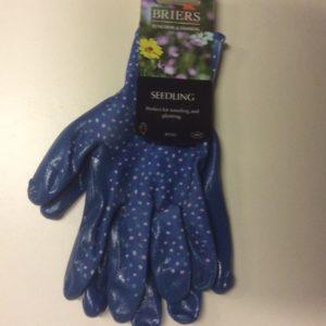 Briers Birds /& Branches Sky Blue Seed /& Weed Ladies Gardening Gloves B7072